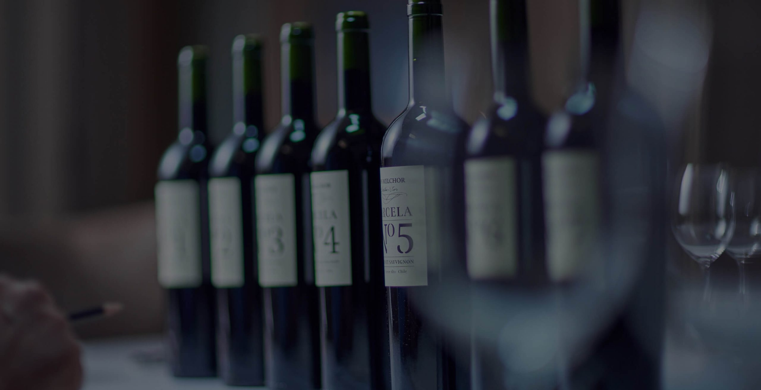 Discover the world of Chile's first icon wine