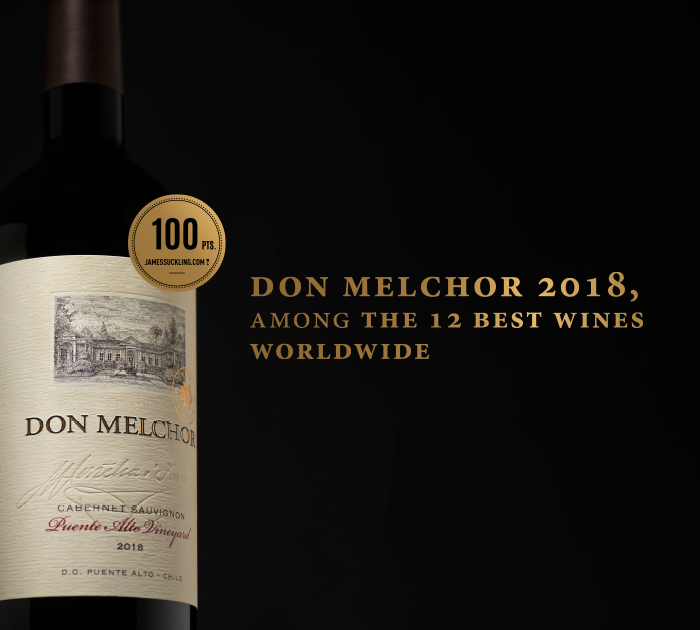 Don Melchor 2018: Among the 12 best wines worldwide